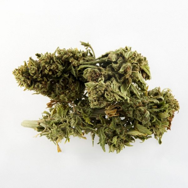 t1 trump cbd hemp bud for sale online